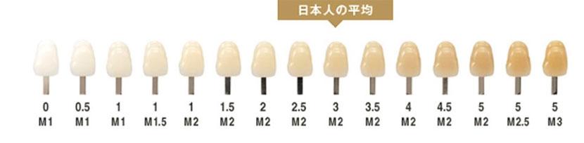 日本人の歯の色イメージ